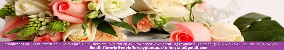 Header Flower Shop